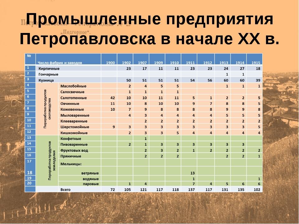 Промышленные предприятия Петропавловска в начале XX в.