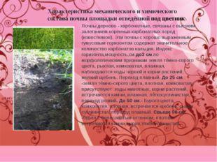 Характеристика механического и химического состава почвы площадки отведённой