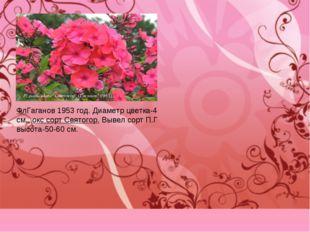 ФлГаганов 1953 год. Диаметр цветка-4 см., окс сорт Святогор. Вывел сорт П.Г в