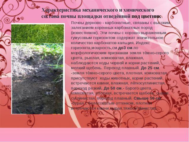 Характеристика механического и химического состава почвы площадки отведённой...