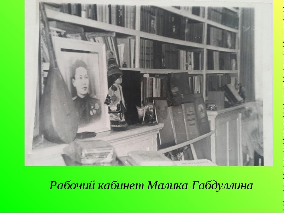Рабочий кабинет Малика Габдуллина