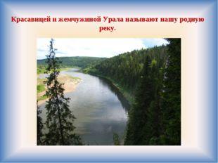 Красавицей и жемчужиной Урала называют нашу родную реку.