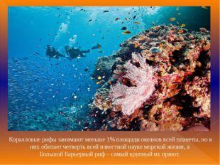 Коралловые рифы занимают меньше 1% площади океанов всей планеты, но в них оби