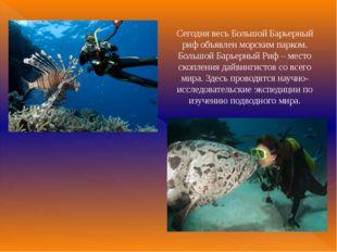Сегодня весь Большой Барьерный риф объявлен морским парком. Большой Барьерный