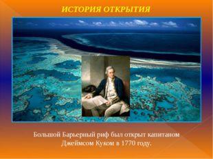 Большой Барьерный риф был открыт капитаном Джеймсом Куком в 1770 году. ИСТОРИ