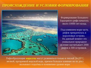 Формирование Большого Барьерного рифа началось около 10000 лет назад. Под вли