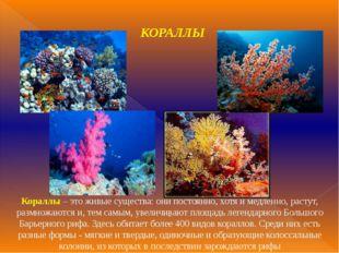 КОРАЛЛЫ Кораллы – это живые существа: они постоянно, хотя и медленно, растут,