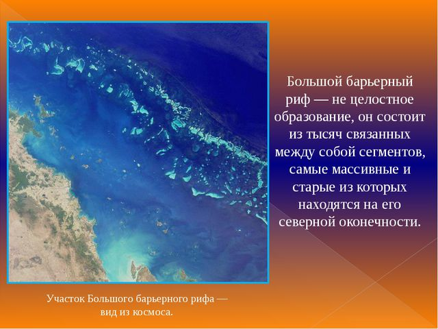 Большой барьерный риф— не целостное образование, он состоит из тысяч связанн...