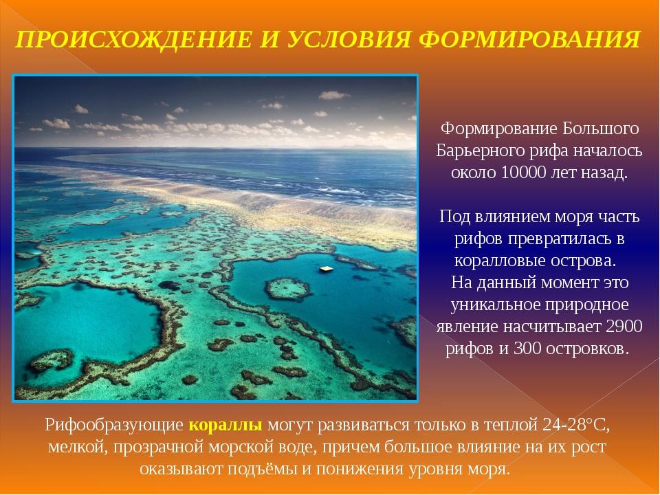Формирование Большого Барьерного рифа началось около 10000 лет назад. Под вли...