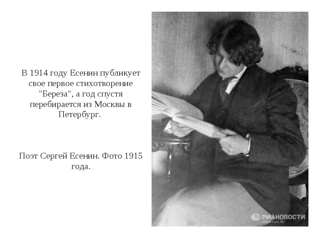 """В 1914 году Есенин публикует свое первое стихотворение """"Береза"""", а год спустя..."""
