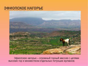 Эфиопское нагорье – огромный горный массив с цепями высоких гор и множество