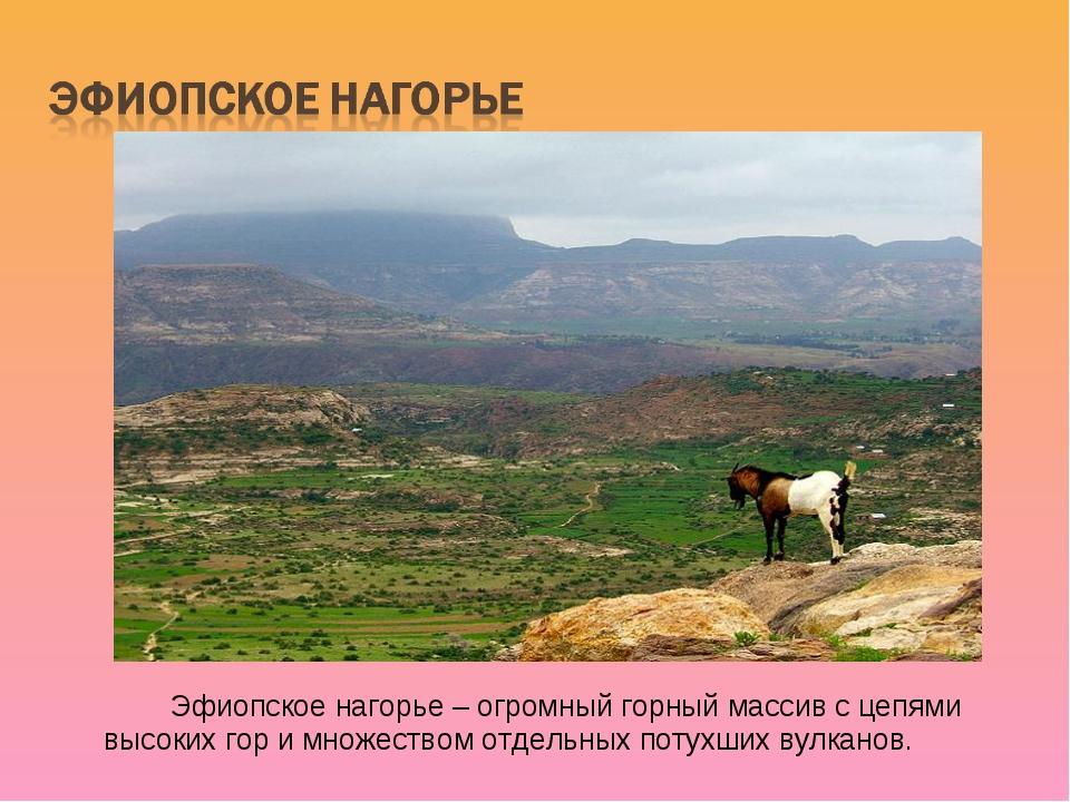 Эфиопское нагорье – огромный горный массив с цепями высоких гор и множество...