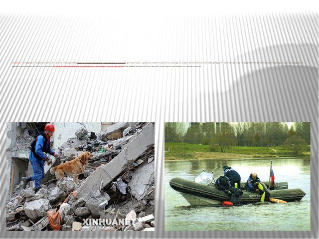 Спасатель – это профессия, которая включает в себя комплекс специальностей (п...