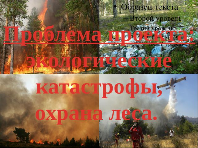 Проблема проекта: экологические катастрофы, охрана леса.