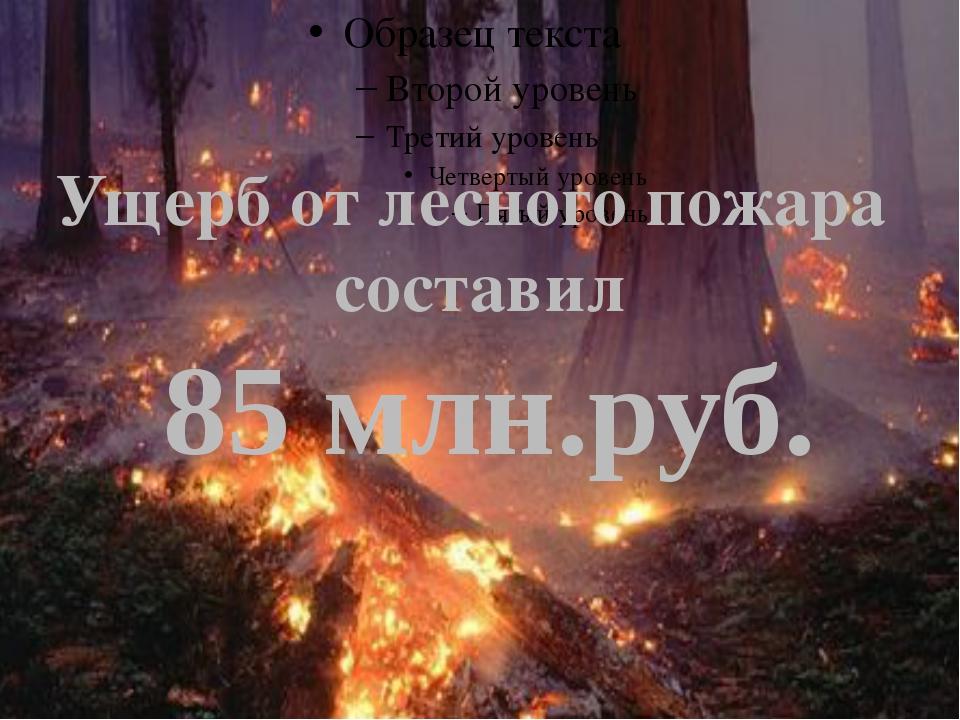 Ущерб от лесного пожара составил 85 млн.руб.