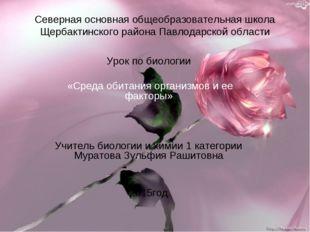 Северная основная общеобразовательная школа Щербактинского района Павлодарско