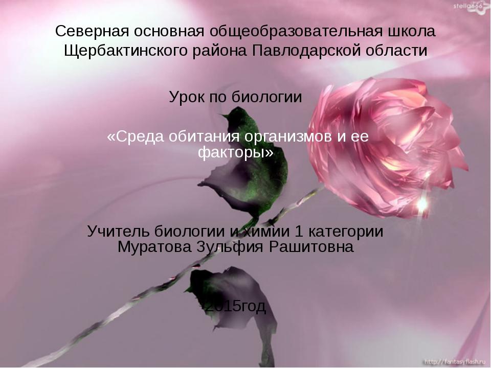 Северная основная общеобразовательная школа Щербактинского района Павлодарско...
