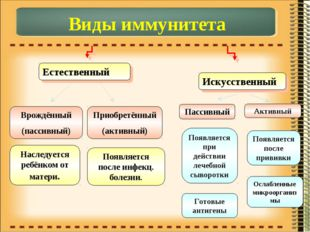 Виды иммунитета Естественный Искусственный Врождённый (пассивный) Приобретённ