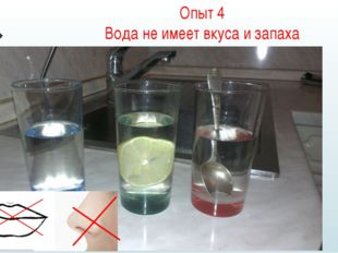 Опыт 4 Вода не имеет вкуса и запаха