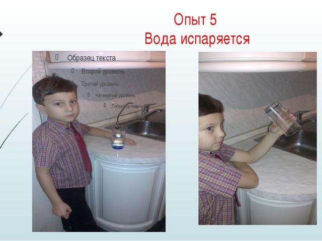 Опыт 5 Вода испаряется