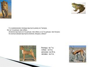 Н а соревнованиях леопард прыгнул в длину на 7 метров. Это на 1 м дальше, че