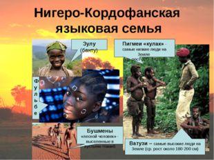 Нигеро-Кордофанская языковая семья Зулу (банту) Пигмеи «кулак» - самые низкие