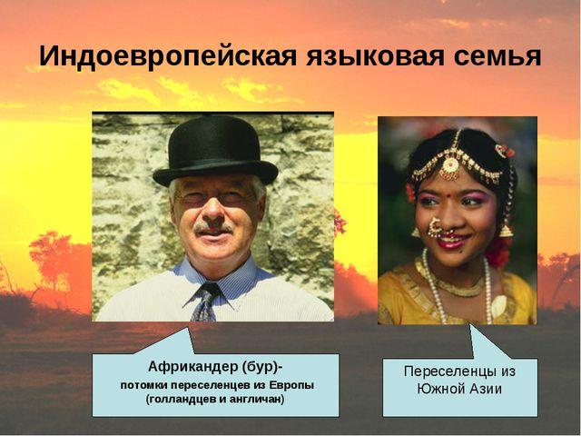 Индоевропейская языковая семья Африкандер (бур)- потомки переселенцев из Евро...