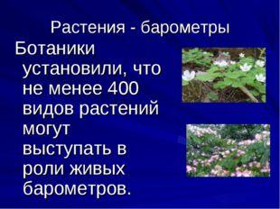 Растения - барометры Ботаники установили, что не менее 400 видов растений мог