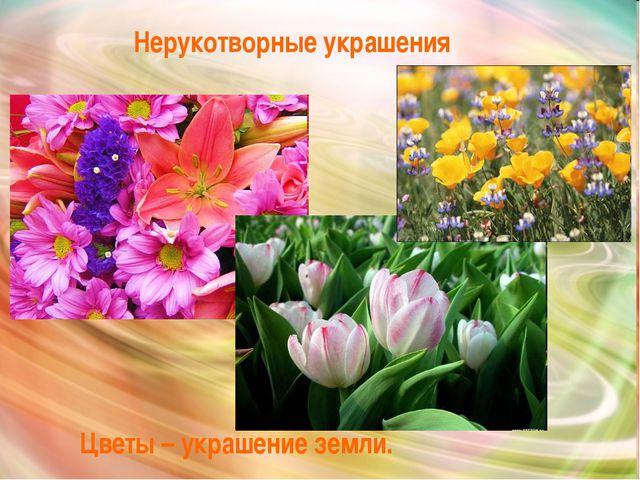 Цветы – украшение земли. Нерукотворные украшения