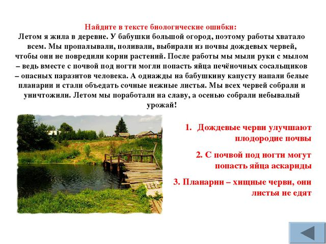 Найдите в тексте биологические ошибки: Летом я жила в деревне. У бабушки боль...