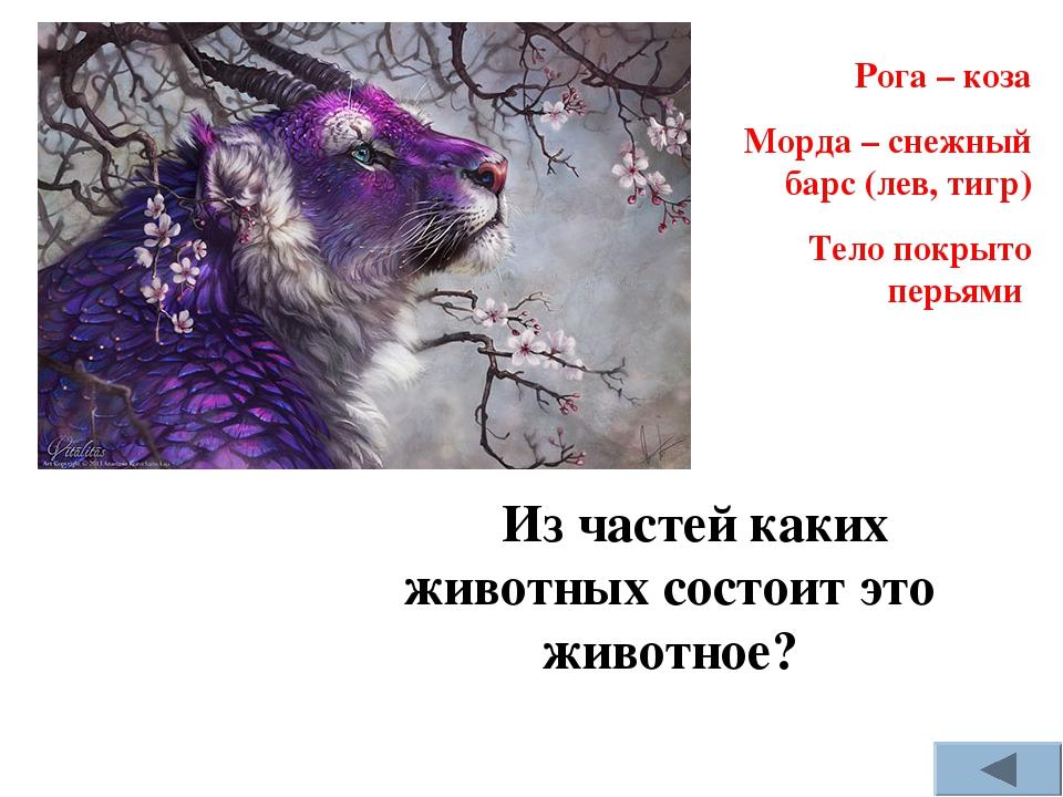 Из частей каких животных состоит это животное? Рога – коза Морда – снежный ба...
