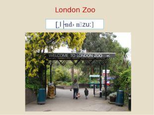 London Zoo [lʌndənzu:]