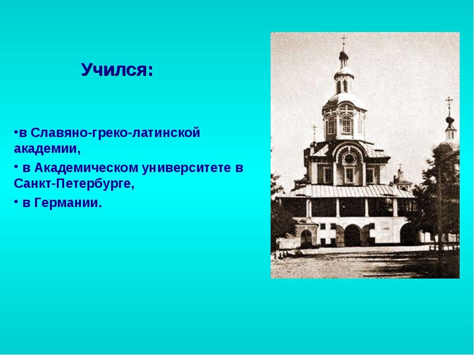 в Славяно-греко-латинской академии, в Академическом университете в Санкт-Пете...