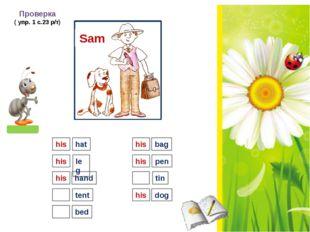 Sam Проверка ( упр. 1 с.23 р/т) his hat leg hand tent bed bag pen tin dog hi