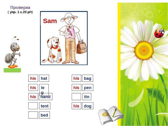 Sam Проверка ( упр. 1 с.23 р/т) his hat leg hand tent bed bag pen tin dog hi...