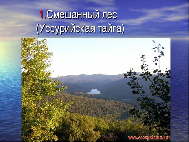 1.Смешанный лес (Уссурийская тайга)