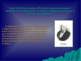 Зиму 1873 года и весну 1874 года Софья Васильевна посветила исследованию « К