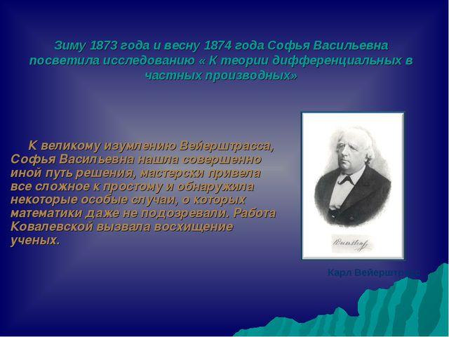 Зиму 1873 года и весну 1874 года Софья Васильевна посветила исследованию « К...