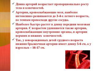 Длина артерий возрастает пропорционально росту тела и конечностей. Артерии, к