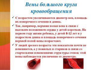 Вены большого круга кровообращения С возрастом увеличиваются диаметр вен, пло