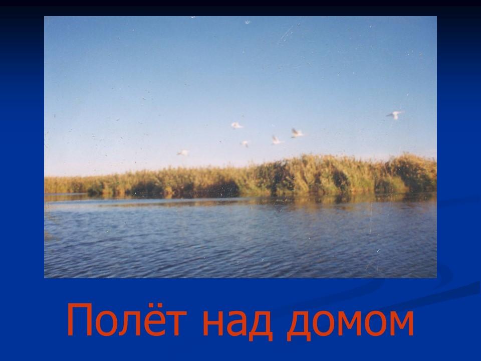 hello_html_ea57c08.jpg
