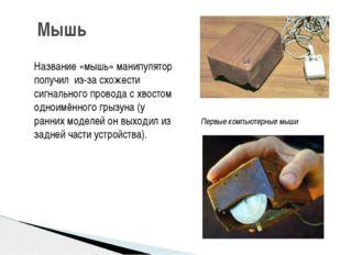 Мышь Название «мышь» манипулятор получил из-за схожести сигнального провода с