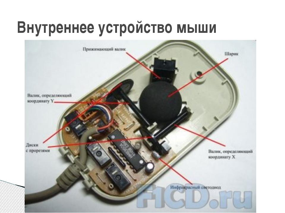 Внутреннее устройство мыши