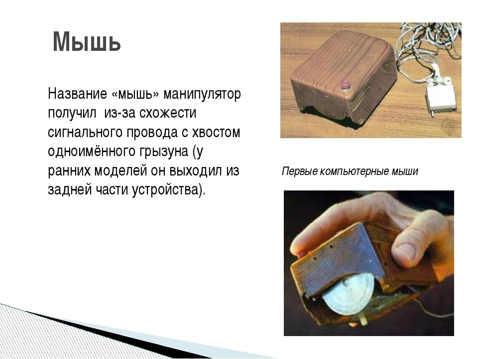 Мышь Название «мышь» манипулятор получил из-за схожести сигнального провода с...