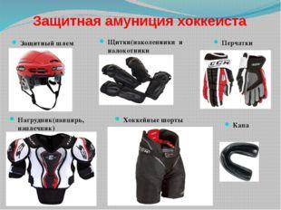 Защитная амуниция хоккеиста Защитный шлем Щитки(наколенники и налокотники Наг