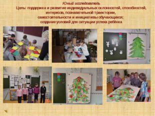 Юный исследователь Цель: поддержка и развитие индивидуальных склонностей, спо