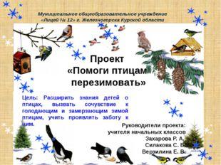 Проект «Помоги птицам перезимовать» Руководители проекта: учителя начальных к