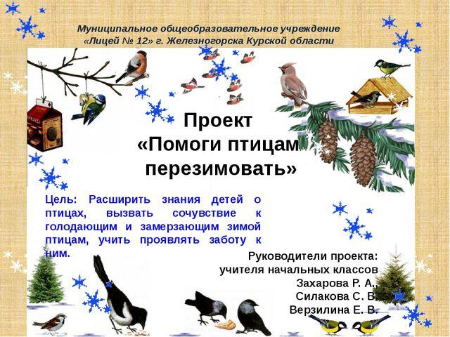 Проект «Помоги птицам перезимовать» Руководители проекта: учителя начальных к...