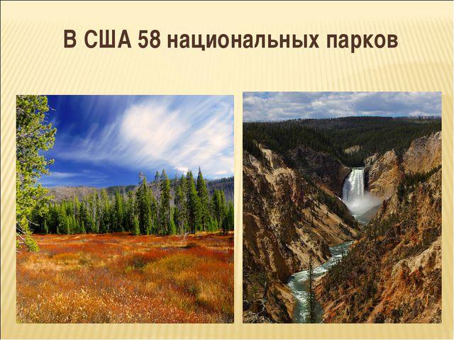 В США 58 национальных парков