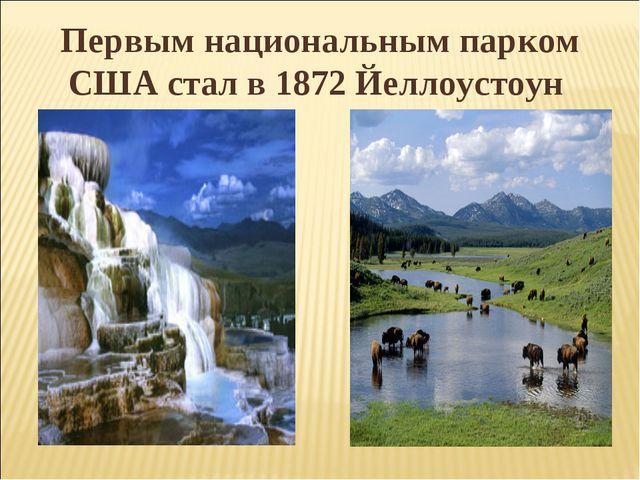 Первым национальным парком США стал в 1872 Йеллоустоун